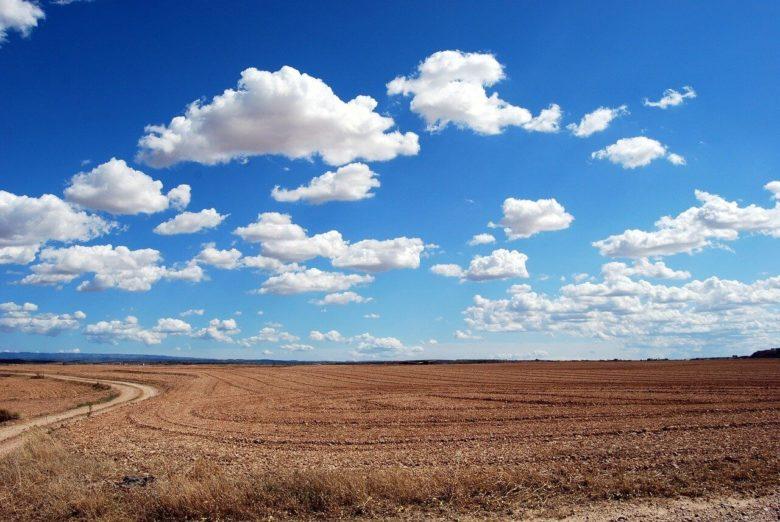 field-dry