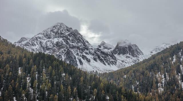 mountain-taiga