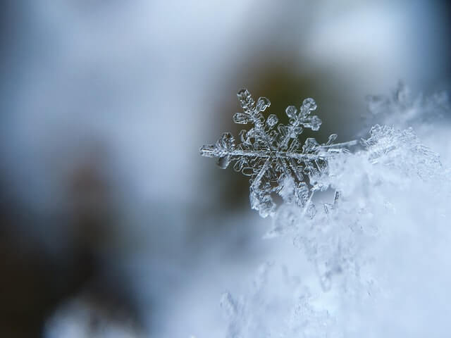snow-frigid