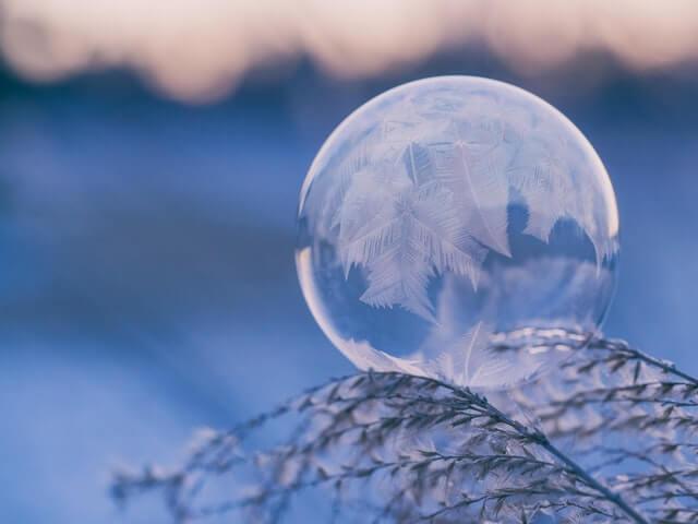 winter-dw
